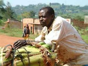 uganda s poverty eradication action plan Of the poverty eradication action plan, health research in uganda and in the region and the global health agenda the process of development of the hssip was highly consultative, participatory and transparent.